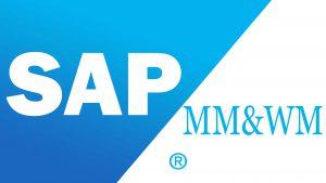 SAP MM Malzeme Yönetimi ve Stok Modülü Danışmanlık Kursu