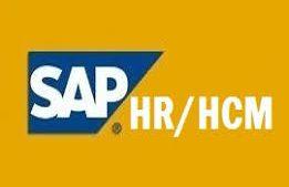 SAP HR İnsan Kaynakları ve Bordro Modülü Danışmanlık Kursu