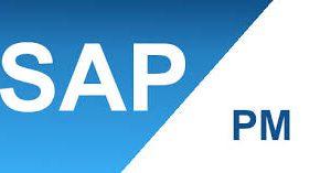 SAP PM Bakım Planlama Modülü Danışmanlık Kursu