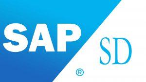 SAP SD Satış Dağıtım Modülü Danışmanlık Kursu